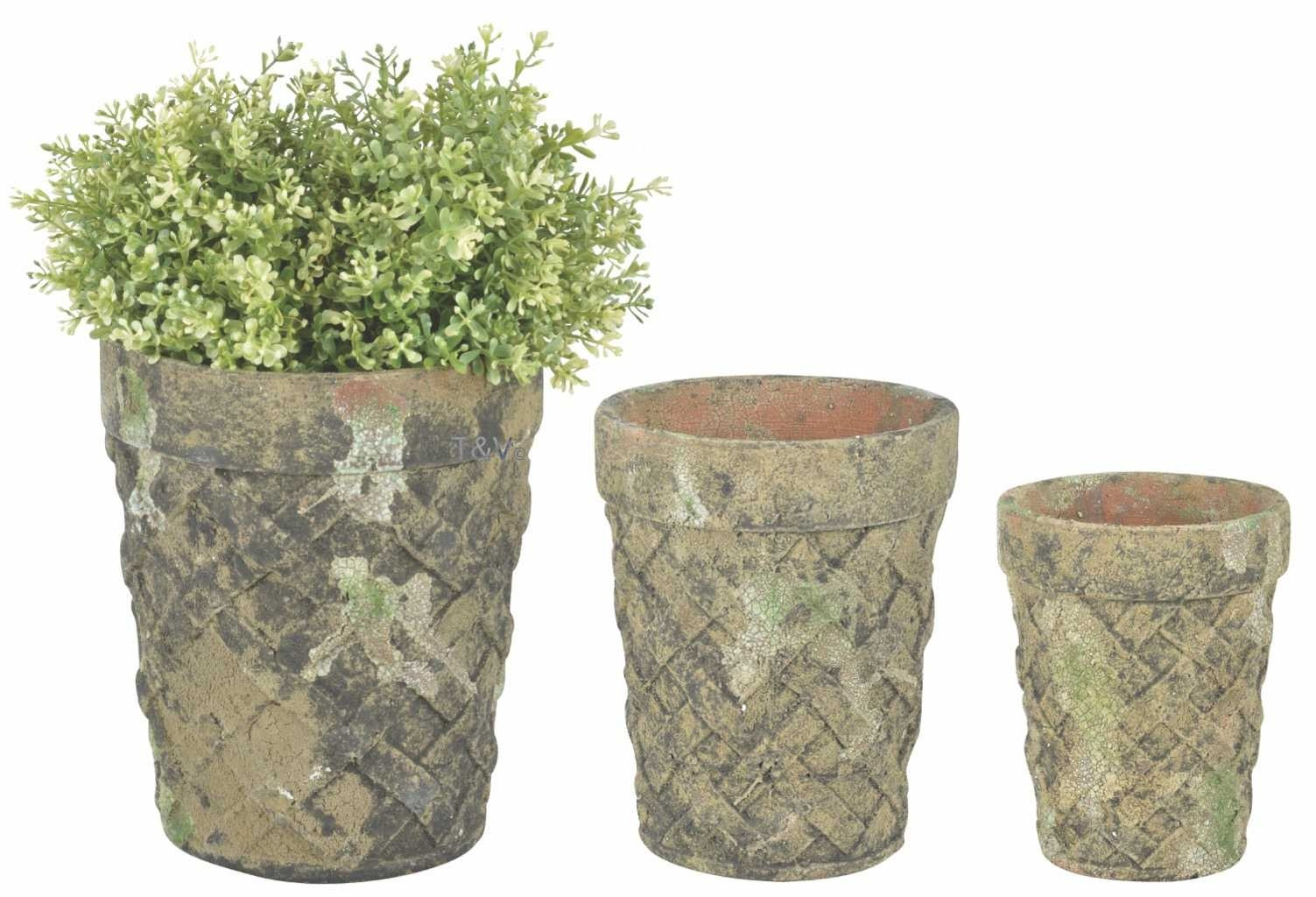Esschert Design AC flower pot set of 3 moss (AC160 - 8714982129407) | Trends & Vision