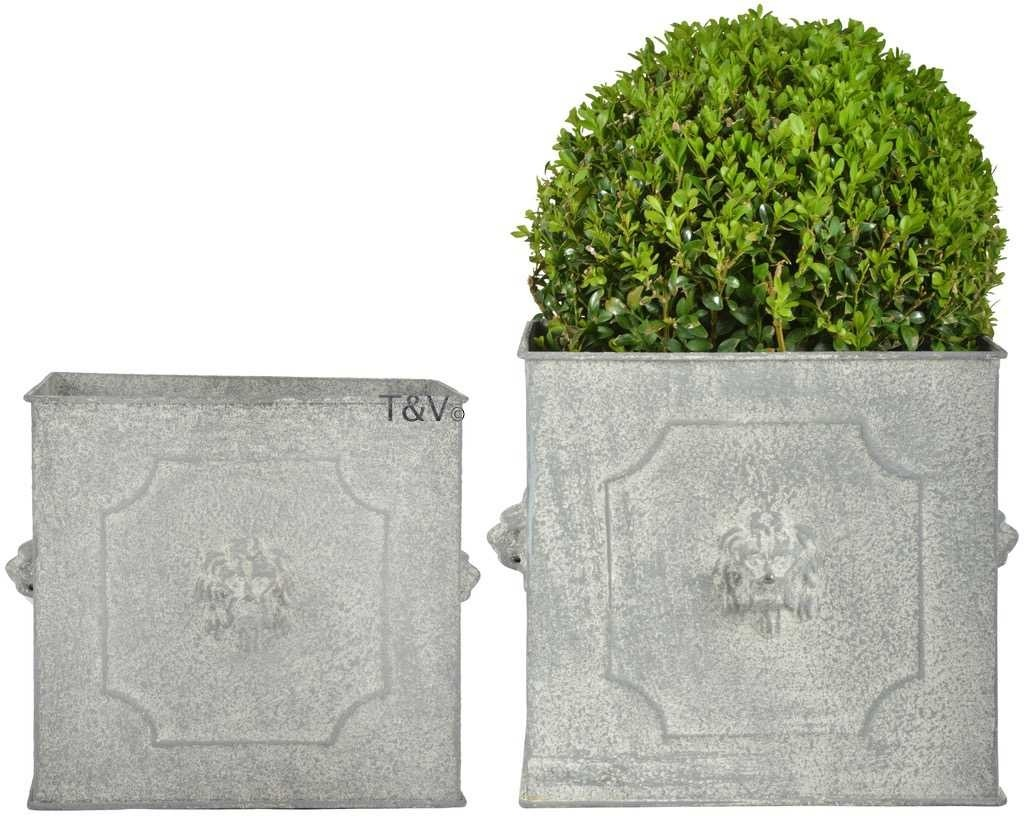 Esschert Design AM lion flower pots square set/2 (AM106 - 8714982141416) | Trends & Vision