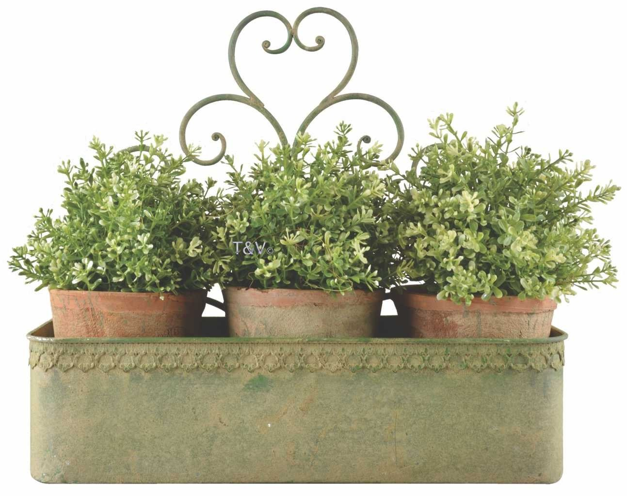 Esschert Design Aged Metal Green wall planter L (AM99 - 8714982130090) | Trends & Vision