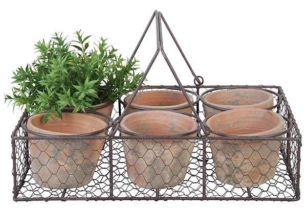 Esschert Design 6 Pots in wire basket (AT13 - 8714982066214) | Trends & Vision