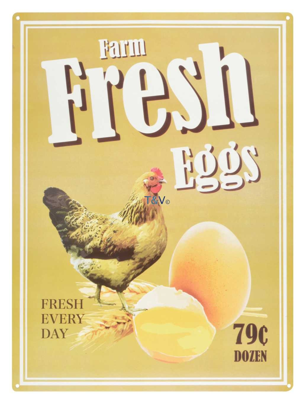 Esschert Design Ad sign fresh eggs (NG31 - 8714982120411) | Trends & Vision