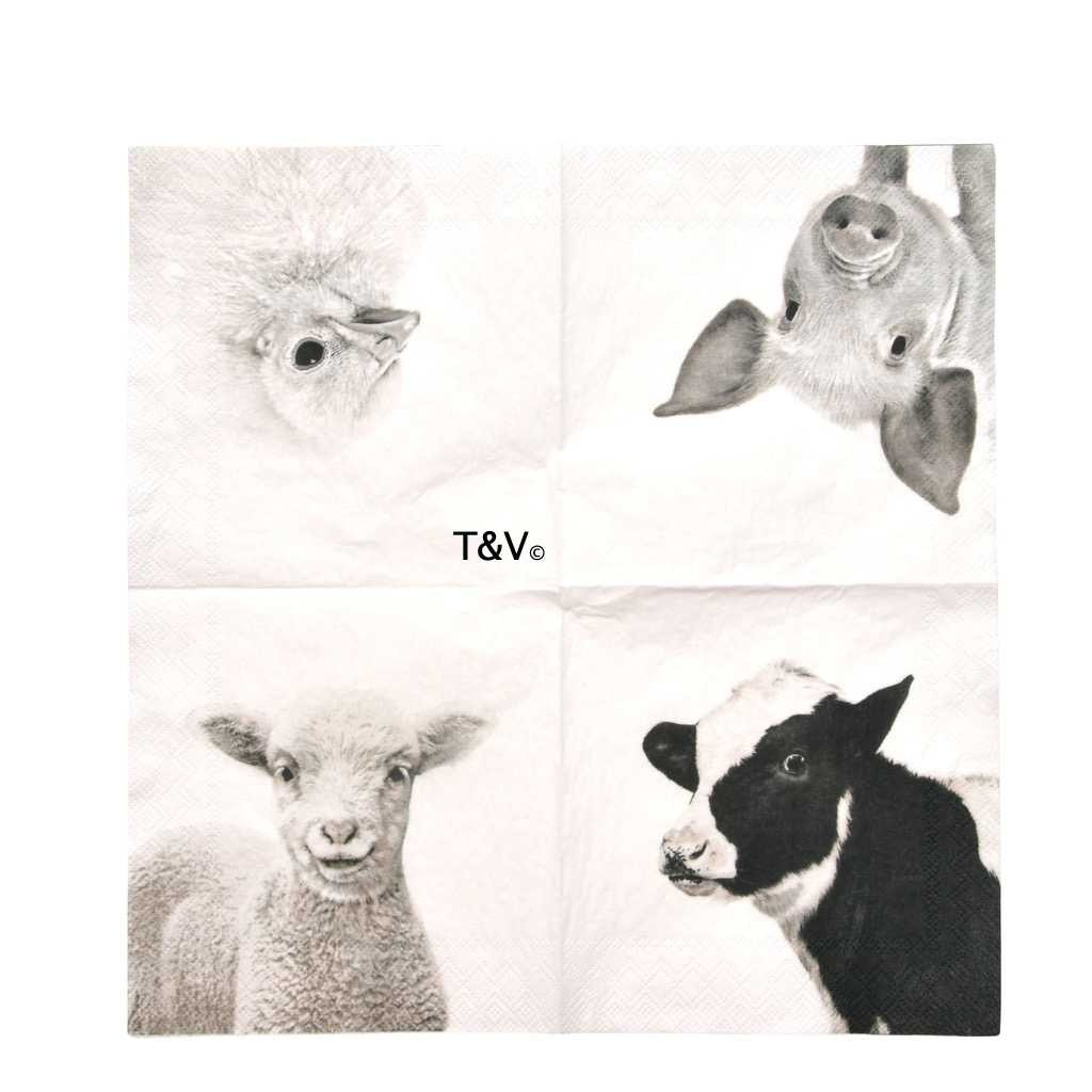 Esschert Design Paper napkins farm animals b/w L (TP330 - 8714982159701) | Trends & Vision