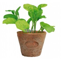 Esschert Design Basil in Aged Terracotta pot Small | Trends & Vision