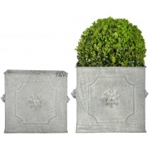 Esschert Design AM lion flower pots square set/2 | Trends & Vision