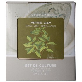 Growing sets - Mint