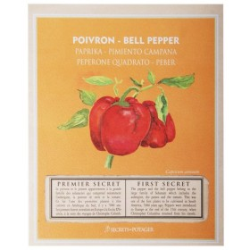 Seed packets - Bell pepper