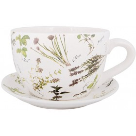 Teacup with saucer - Herbs print