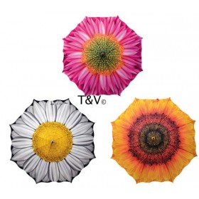 Umbrella flowers assorted